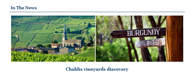 Chablis vineyards.jpg